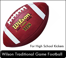 Wilson 1205 TDY Game Football