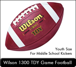 Wilson 1300 TDY Game Football