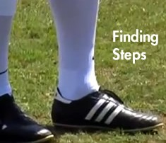 Finding Steps